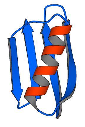 gb1ribbon protein ribbon diagram to wiring diagram ribbon model protein  at soozxer.org
